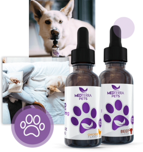 Medterra - Pets CBD Tincture