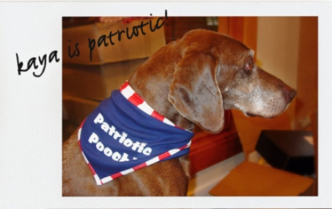 db_kaya_patriotic.jpg