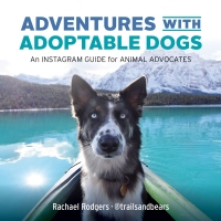 Adventures with Adoptable Dogs