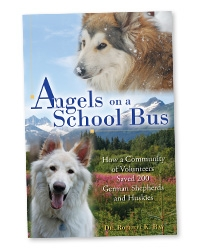 Angels on a School Bus