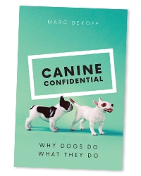 CanineConfidential