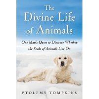 The Divine Life of Animals