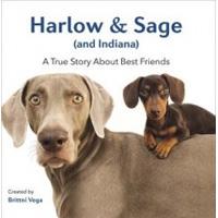 Harlow & Sage