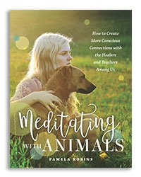 MeditatingWithAnimals