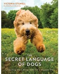 Secret Language