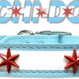Chi-Dog Collar