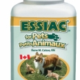 Immune System Support for Dogs