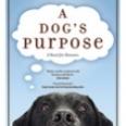 CBC-DogsPurpose-sm.jpg