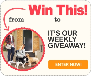 Win 1 of 4 bags from Travel Wags!