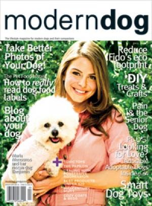 Modern Dog Fall 2009