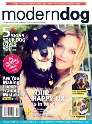 Modern Dog Fall 2015 Cover