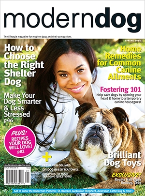 Spring 2014 Modern Dog Magazine