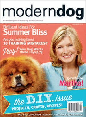 MDSum12Cover-Issue.jpg