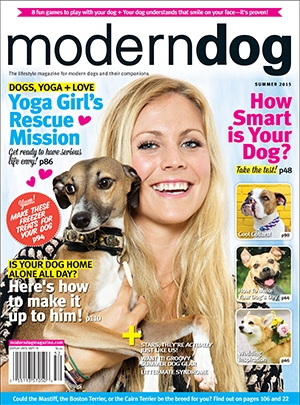 Modern Dog Summer 2015 Cover