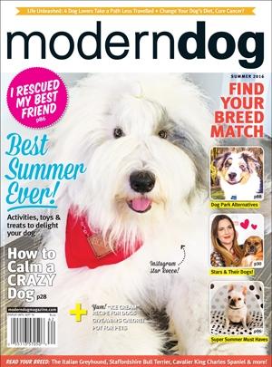 Modern Dog Summer 2016