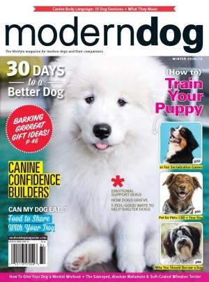 Modern Dog Winter 2018/19