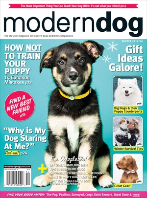 Winter 2015 16 Modern Dog Magazine