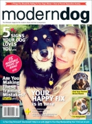 Modern Dog Fall 2015 Cover