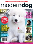 Modern Dog Winter 2018/19