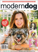 Modern Dog Magazine Winter 2014 Cover