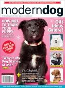 Modern Dog Winter 2015/16
