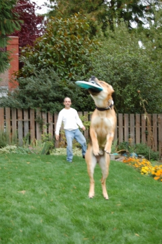 Rico frisbee catch2.jpg
