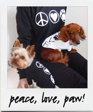db_big+rose_peace.jpg