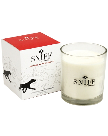 Friends to the Rescue Candle