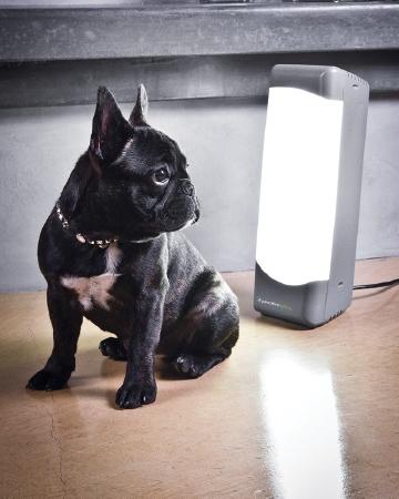 Pawsitive Lighting's Sol Box