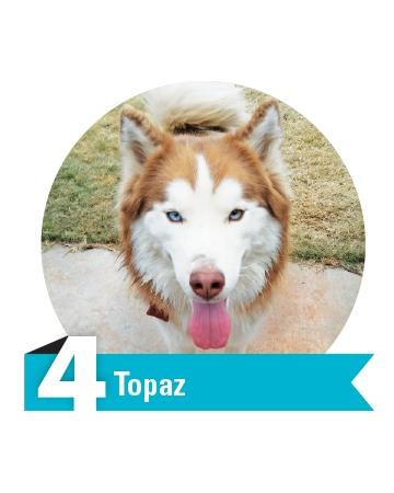 #4 Topaz