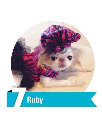 #7 Ruby