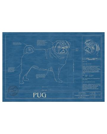AnimalBlueprint