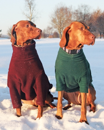 Dog sweaters from Equafleece