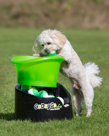 Fetch machine from Go Dog Go