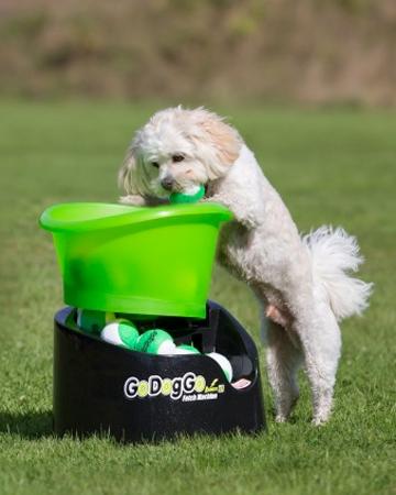 Fetch machine from Go Dog Go