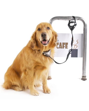 Safespot Locking Leash from Pawz