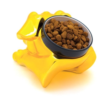Dog Bowl from 40 Winks Designs
