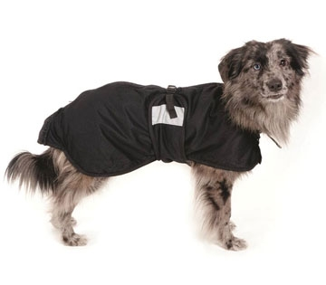 Therapeutic dog blanket by Back on Track Products