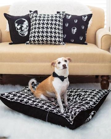 Dog beds by Jo Alcorn