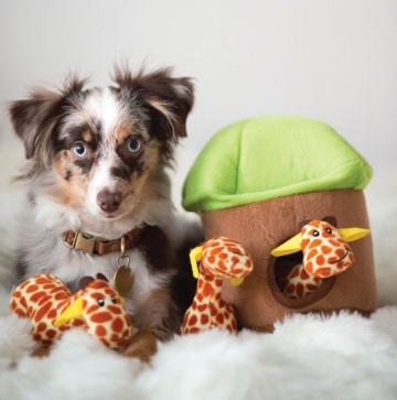 Zippy Paws fun dog toys with interactive plush parts