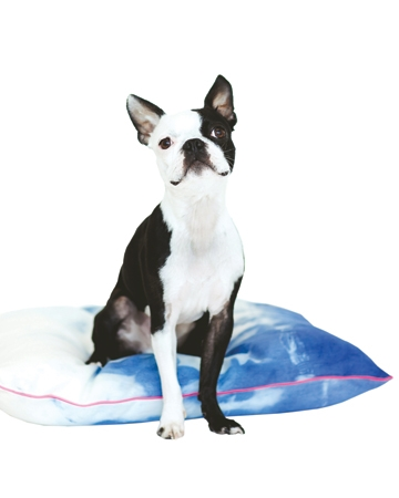 Indigo hand-dyed dog bed by Dog and Crow