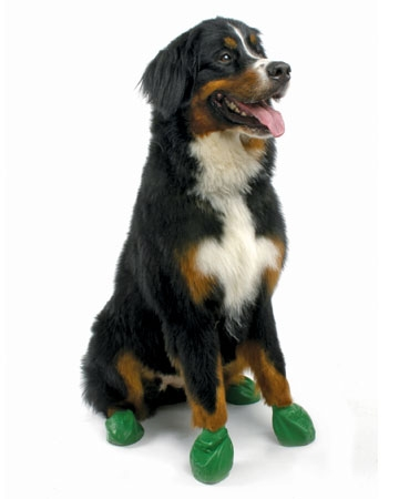 Dog boots from Pawz