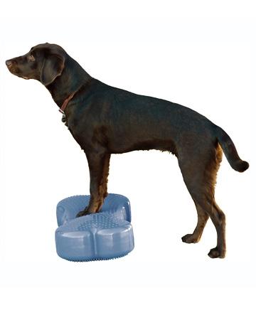 Dog Tread