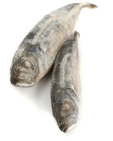Frozen Sardines