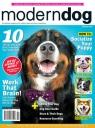 Modern Dog Spring 2020