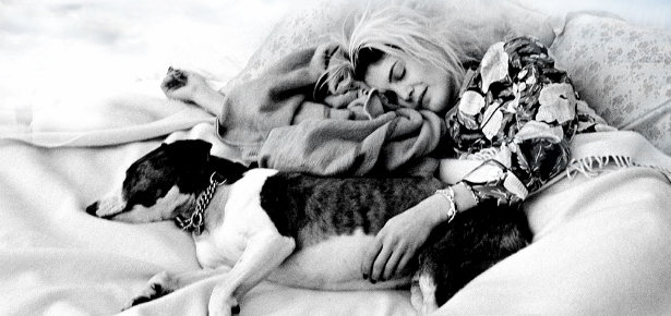 Alison Mosshart of the Kills sleeping beside her dog Archie