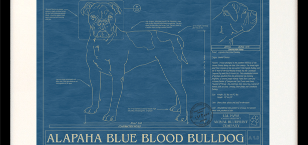 Animal blueprint custom dog breed wall art modern dog magazine animal blueprint custom dog breed wall art malvernweather Gallery