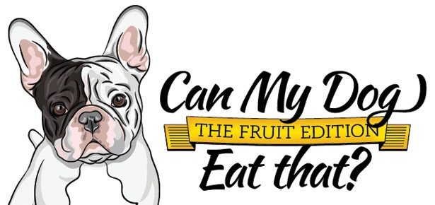 Can My Dog Eat Fruit?