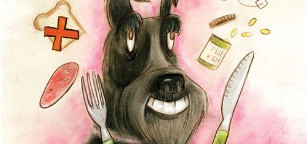 best dog food for cancer