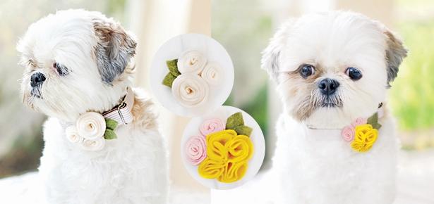 Floral Collar Wraps